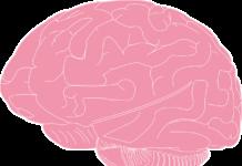 Kilka prostych sposobów na usprawnienie pracy mózgu